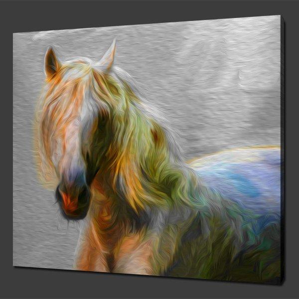 "White Horse Canvas Wall Art Prints 12""x12"" Free"