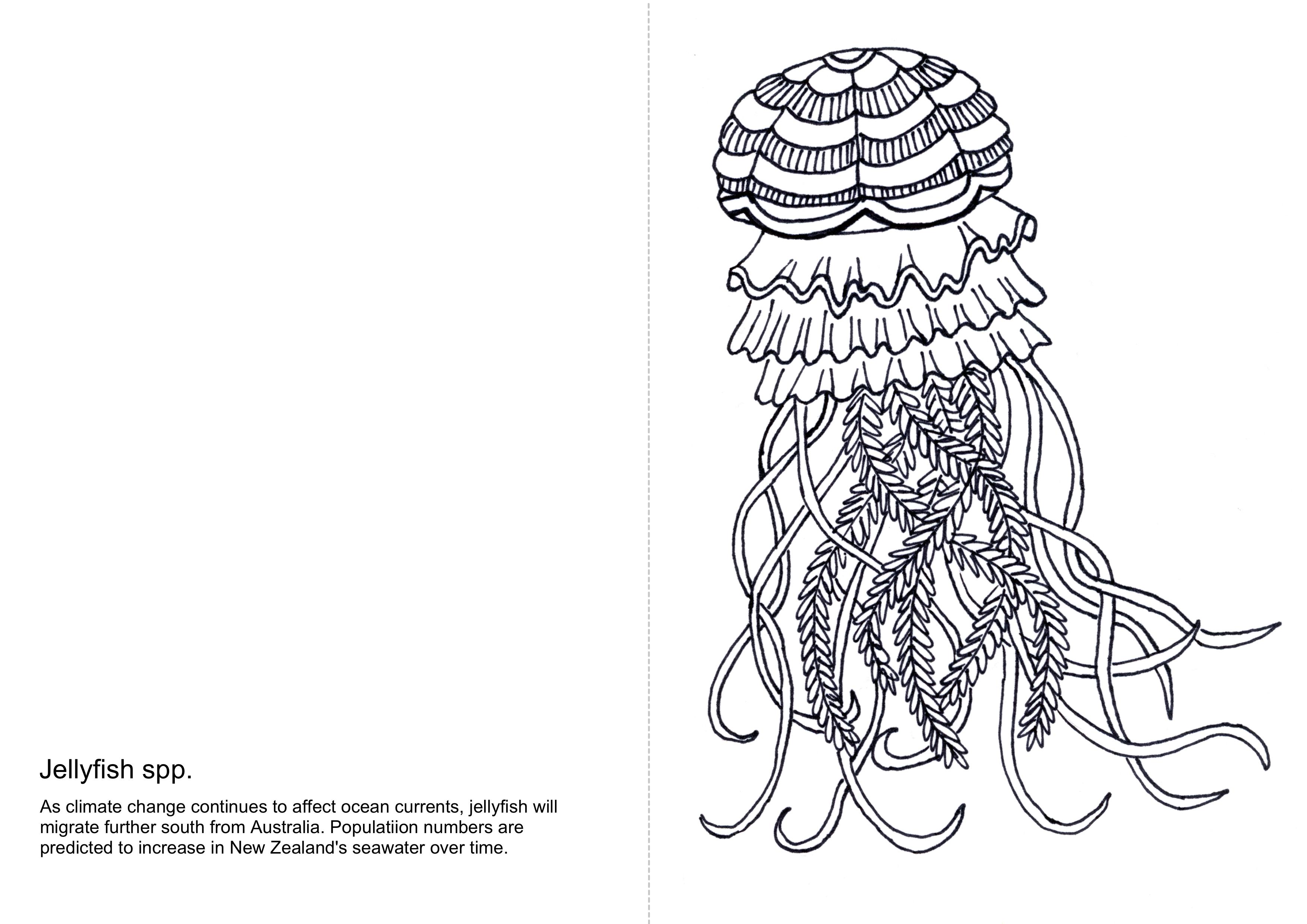 2° different: ARTiculation of Ocean Warming
