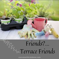 Friends?...Terrace Friends!