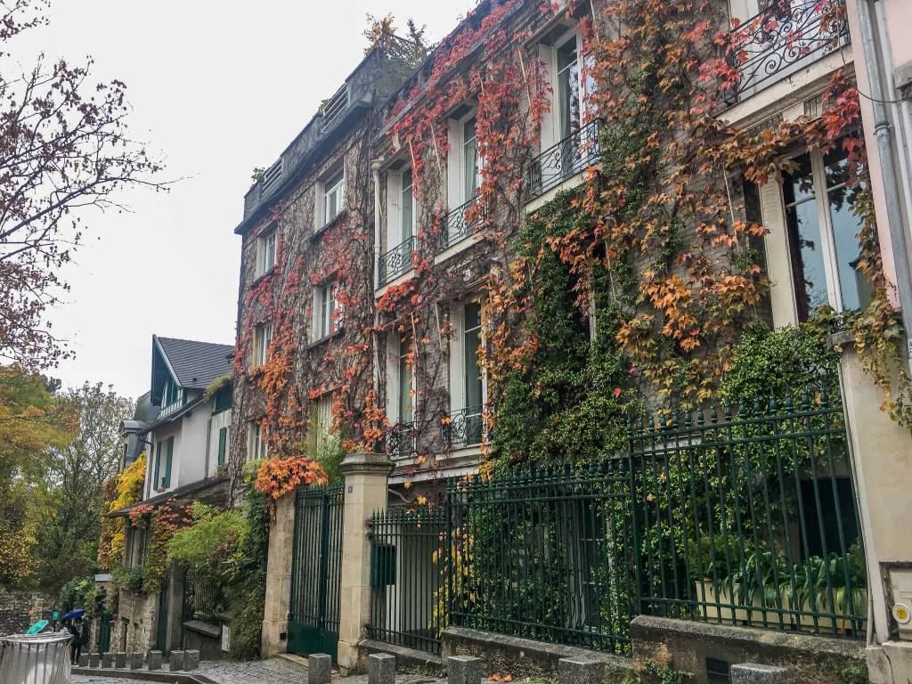 Montmartre vines