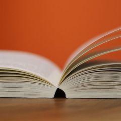 Pilo Literary Agency: encauzar el talento