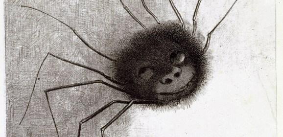 Una araña en el espejo