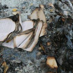 Cada anciano que muere es una biblioteca que se quema