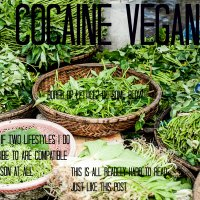 IS COCAINE VEGAN?