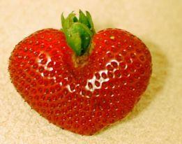 61900-strawberry004
