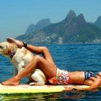 Manual de boa vizinhança no Paddle Surf