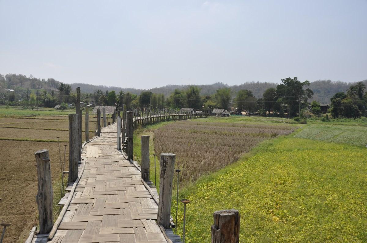 J+207 Traverser le plus long pont en bambous de Thaïlande !