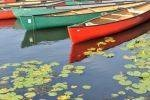 sharon schindler photography boats red and green with lily pads capability mom
