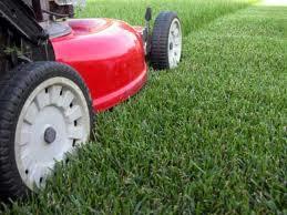 Your Local landscape service company, Full Lawn care, Lawn Installation, Hydroseeding