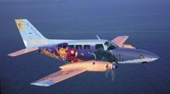 cape-air-plane