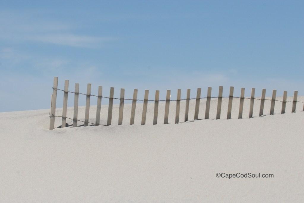 Nauset Cut 7 Beach Fence