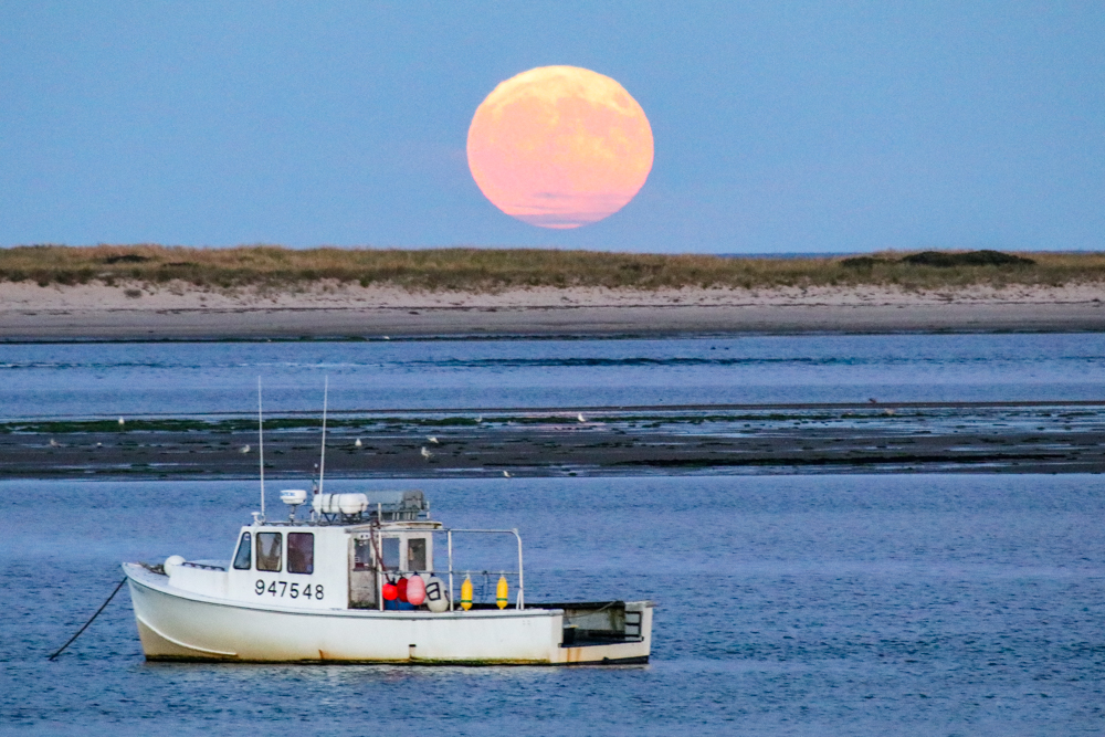 When to Photograph the Full Moon Rising - CapeCodSoul