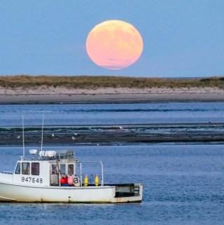 Harvest Moon Rise 2016 Chatham