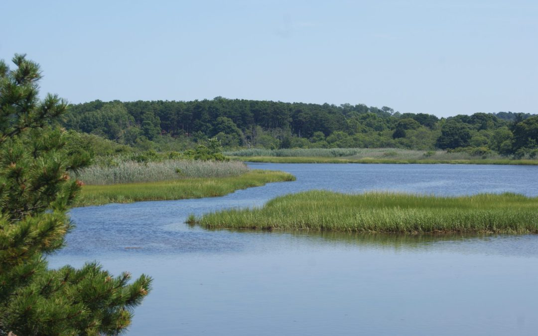 Cape Cod Times: Federal wastewater ruling could have Cape implications