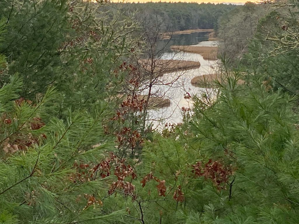 The Mashpee River Reservation DIANE BAIR