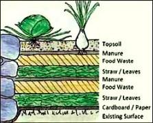 lasagna-gardening-layers