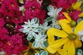 August bouquet: Crepe myrtle, Snow-on-the-mountain (Euphorbia marginata), Rudbeckia maxima