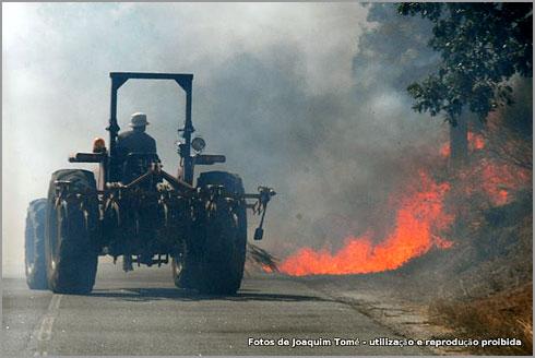 Agricultores do Sabugal combatem os incêndios - Foto Joaquim Tomé (Tutatux)