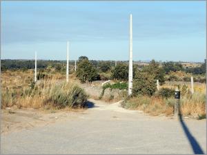 Electricidade chega em Setembro a casa de família de cinco pessoas na Ruvina - Capeia Arraiana