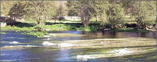 Há 14 anos a poluição no rio Côa gerou protestos no Sabugal