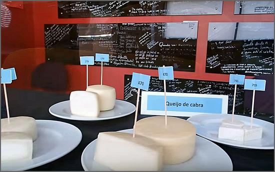 Os queijos  vão a concurso sem rótulo