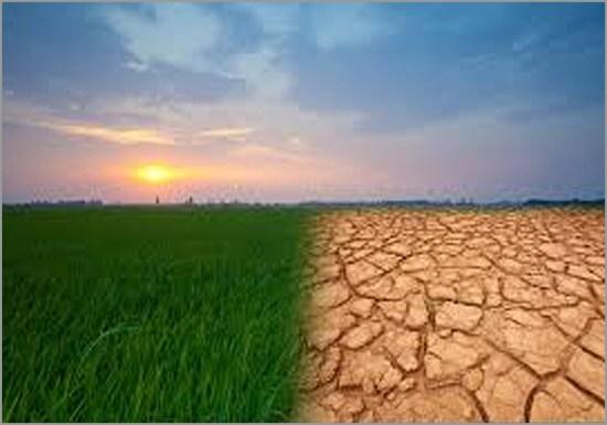 Há mesmo alteração climática - Capeia Arraiana