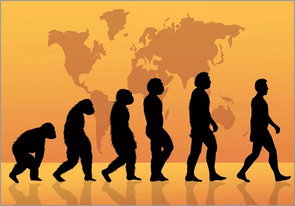 A evolução da raça humana - Capeia Arraiana