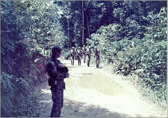 Patrulha avança na picada da selva guineense - Capeia Arraiana