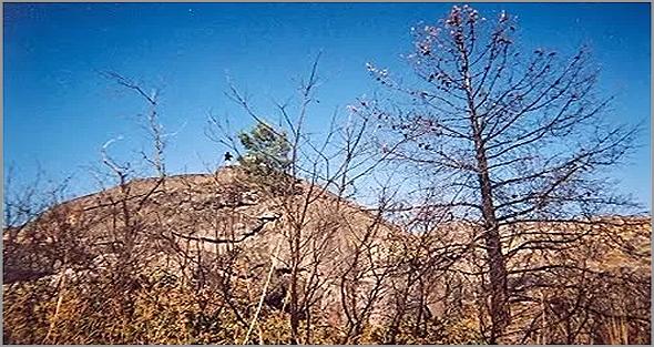 Barroco Riscado no Casteleiro - Capeia Arraiana