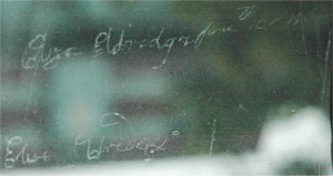 elizawindowlarge
