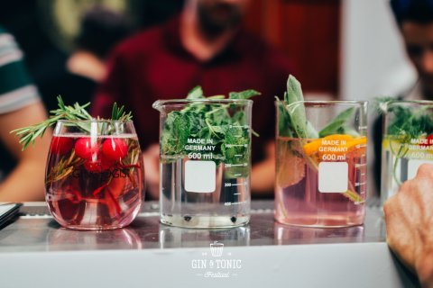 Gin and Tonic Festival (Image: Supplied)