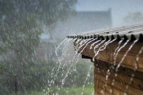 Tả cơn mưa rào mùa hạ - Tập làm văn Lớp 5 (20 mẫu)