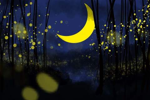 Elemento Lunar Curvo Colgando En Un Brillante Cielo Estrellado , Cielo  Estrellado Brillante, Suspensión, Menisco Imagen de fondo para descarga  gratuita