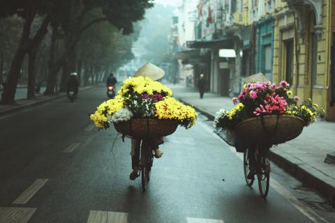 Hà Nội duyên dáng những gánh hoa rong   VIETRAVEL
