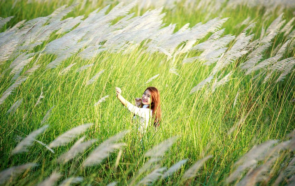 BST 555 hình ảnh hoa cỏ may đẹp, trao gửi thông điệp yêu thương