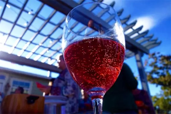 2Hawk Vineyard & Winery Rosé at an Ashland, OR, house party
