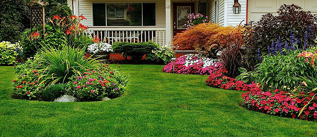 Mulching Leaves Good Lawn