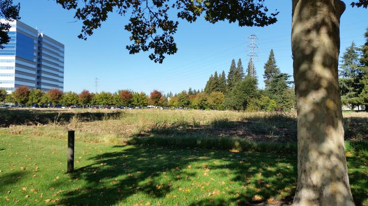 The site of proposed south Natomas office building.
