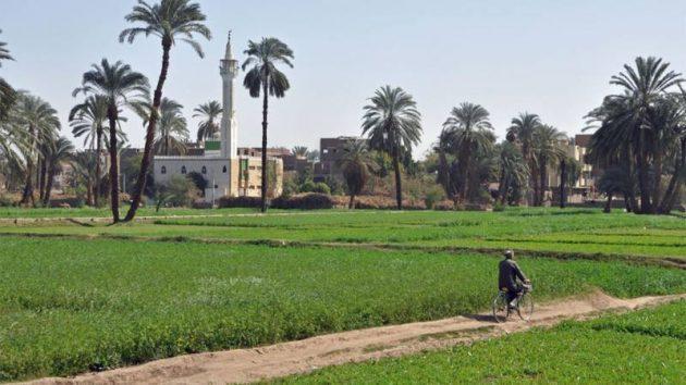 التنمية المحلية: نعمل على 5200 مشروعا ضمن مرحلة اولى لتطوير الريف المصري