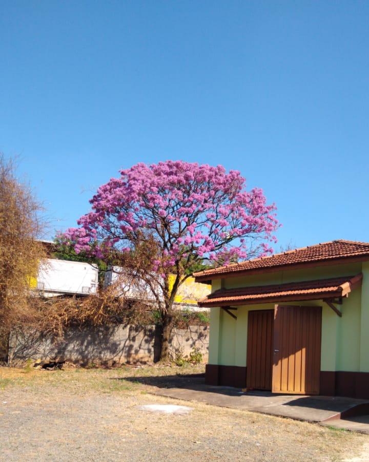 Clinica de recuperação em São Paulo