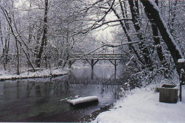 Un inverno color noir: dieci racconti italiani