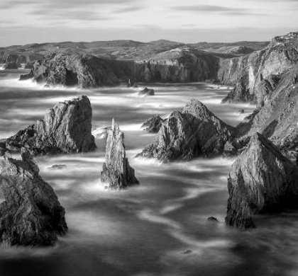 L'isola dei cacciatori di uccelli di Peter May