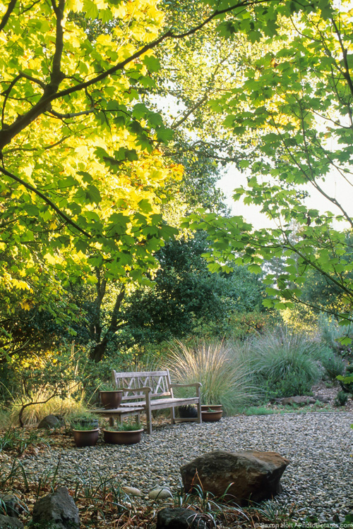 garden design california native