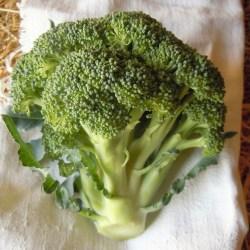 Broccolo2,5€/kg