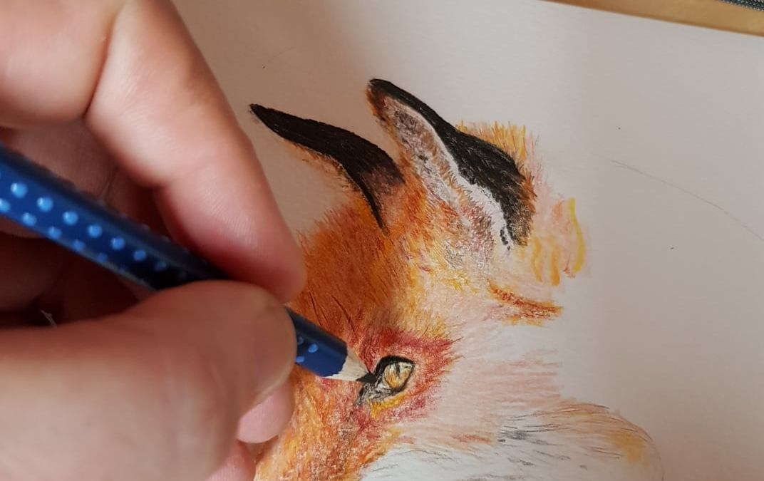 Mes dessins animaliers