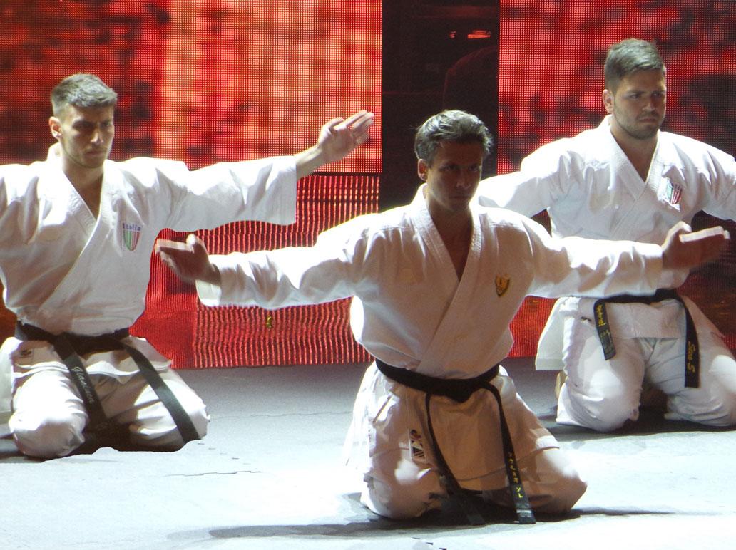 14314433506241032-karate5