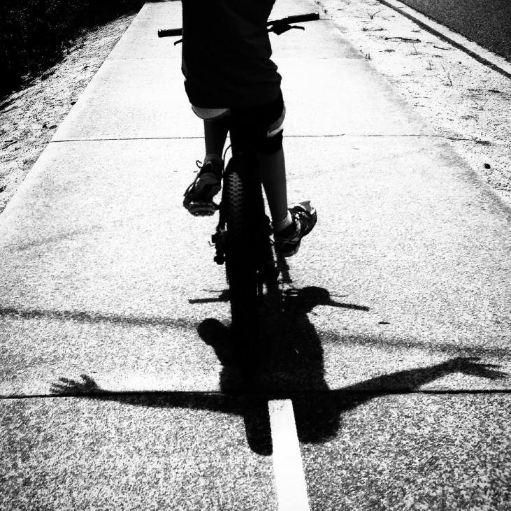Fry_bike freedom