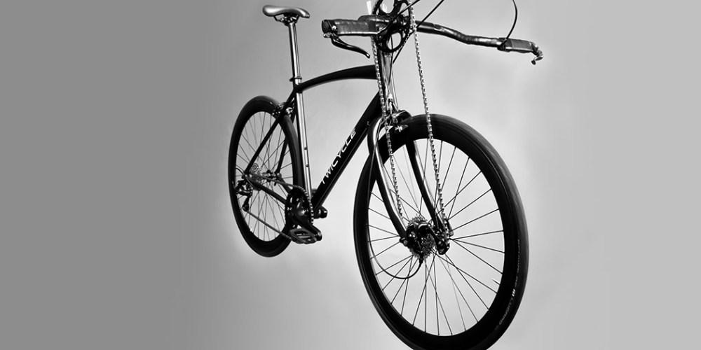 twicycle_13