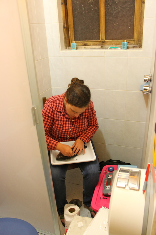 Dr. Allison Pease sampling fishes in a shower stall in Mexico