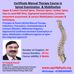 spine manual therapy